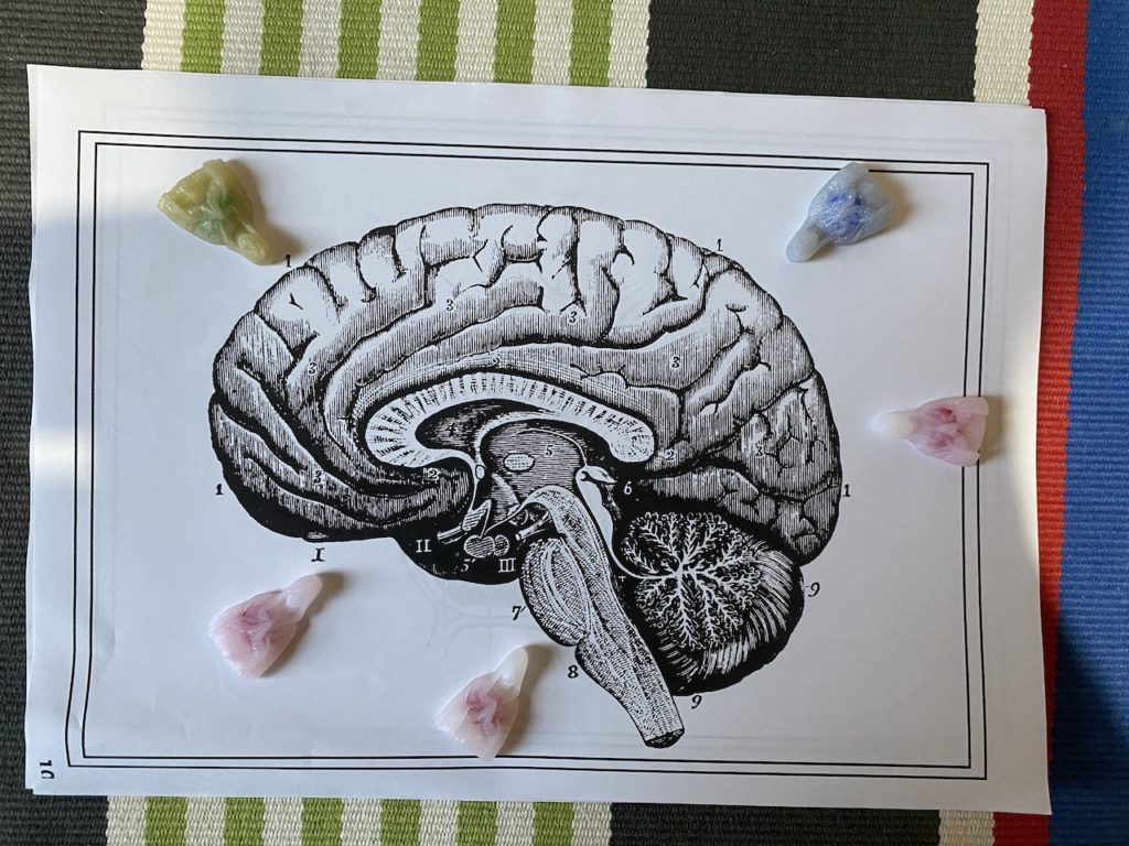 脳みそをアップデートしてやるーーーーー!(1)